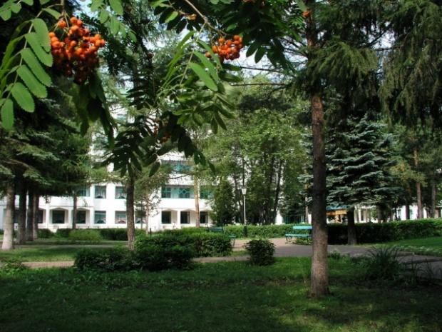 Лето в Янган-Тау.