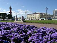 Весна приходит в Санкт-Петербург