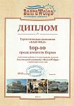 Диплом ТОП-10. За активное продвижение речных круизов 2015